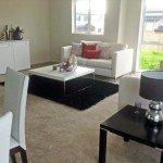 Living Area - Mt Wellington